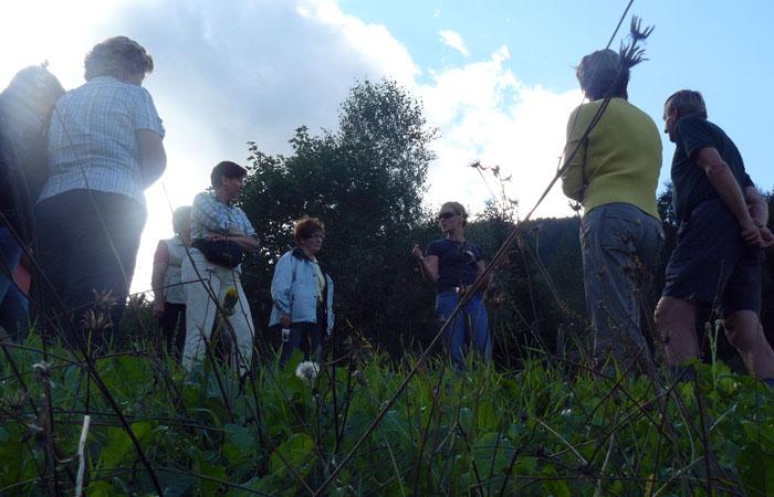 Kräuterwanderung_Gartenbau_Fulpmes_2011_1