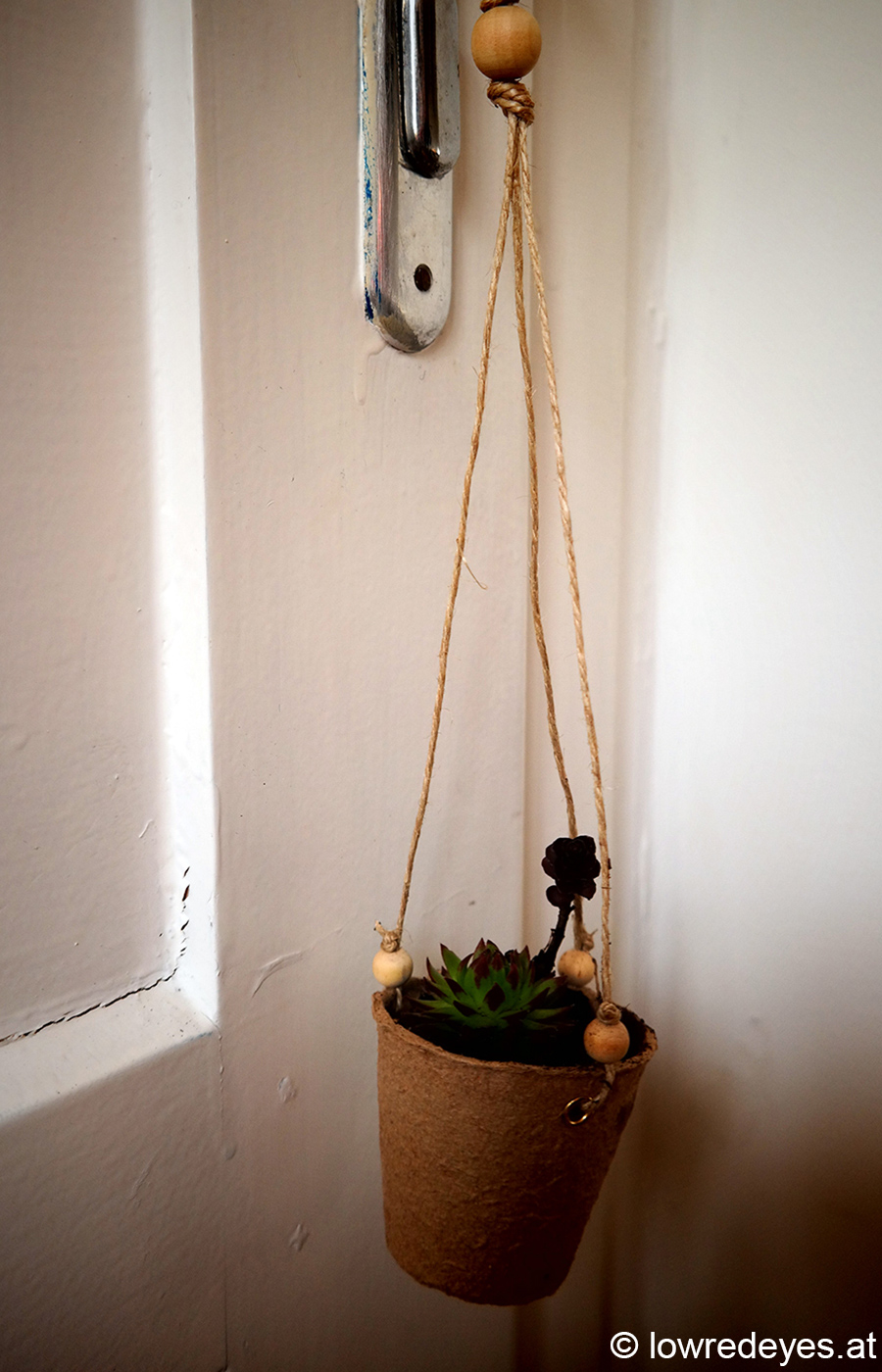 sukkulenten hanging planter eindr cke vom workshop the lowredeyes exp. Black Bedroom Furniture Sets. Home Design Ideas