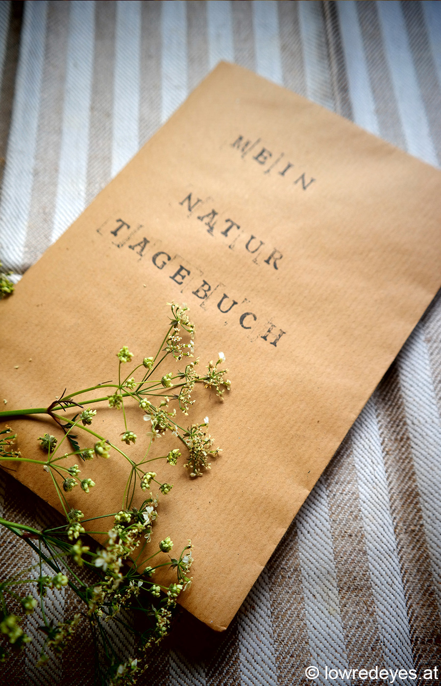 Naturtagebuch