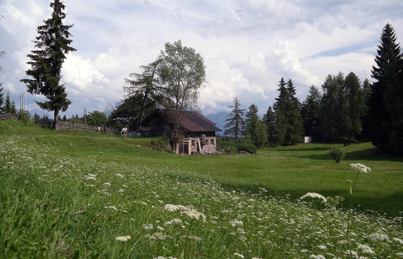 Waldhotel Tann - Das ****TANN liegt idyllisch an einer Waldlichtung bei Klobenstein, Ritten - Südtirol ✓ atemberaubendes Panorama ✓ Ruhe & Erholung ✓ Kraftplatz.