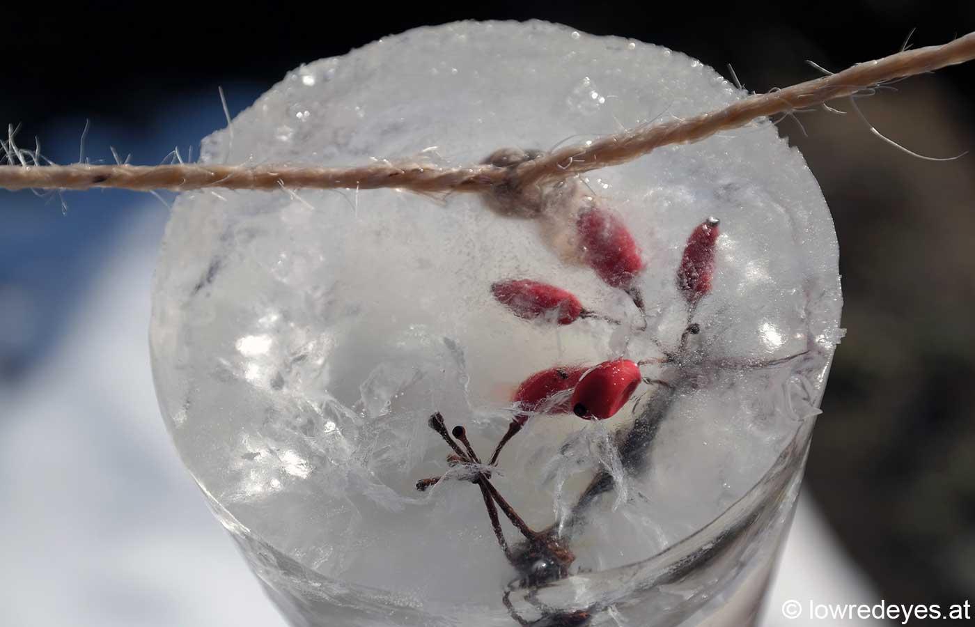 LandArt: Eisgirlande aus Naturmaterialien