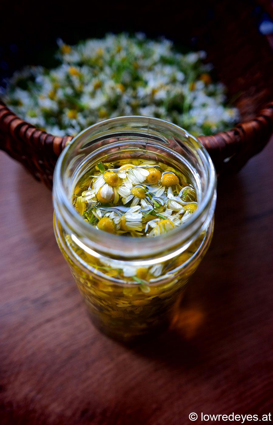 Rezept: Kamillenöl und Handcreme selber machen