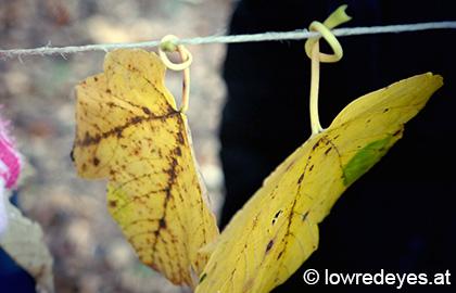 Landart: Blätterschlange, Naturvorhang und Laub-Tatort