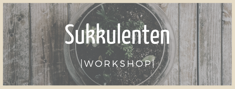 Sukkulenten - Workshop