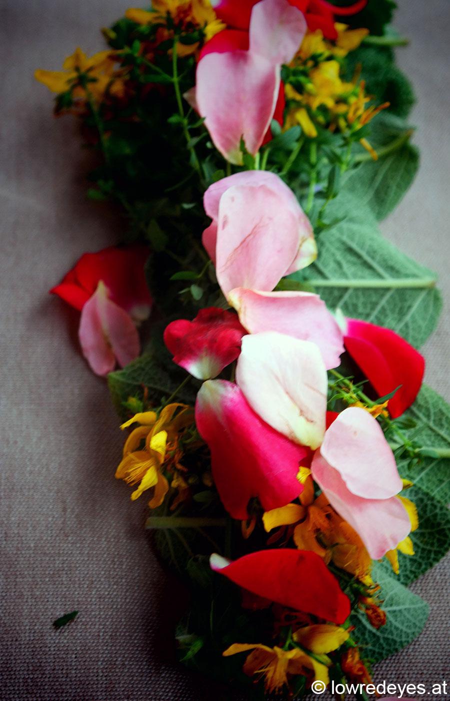 DIY Smudgesticks: Salbei, Lavendel, Johanniskraut, Melisse, Malve, Rosenblätter